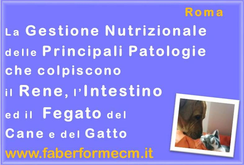 Gestione N. delle Patologie