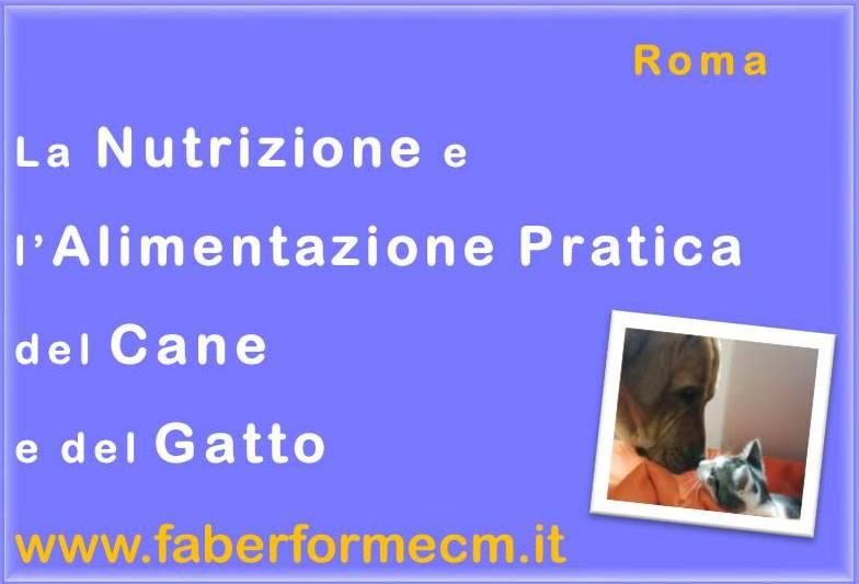 nutrizione Roma