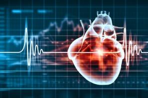 corso ecocardiografia per intensivisti