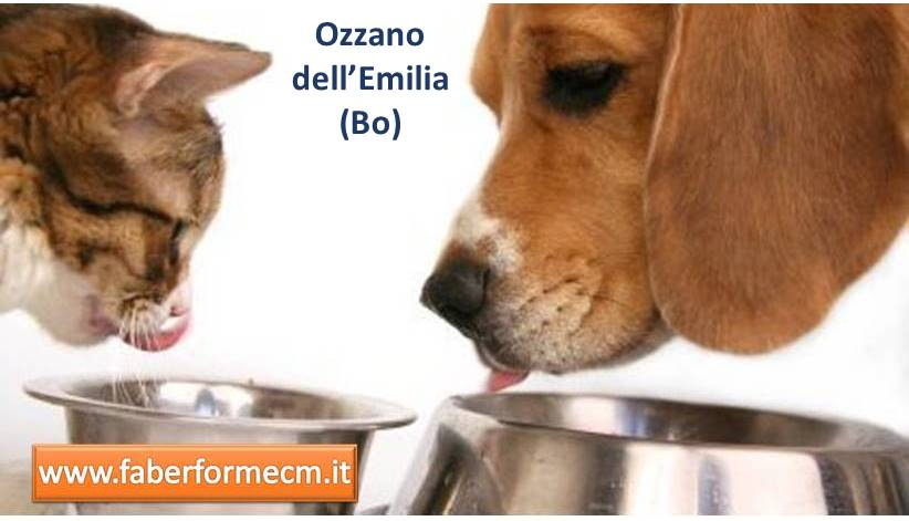 Biagi Ozzano