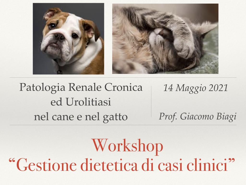 workshop.001